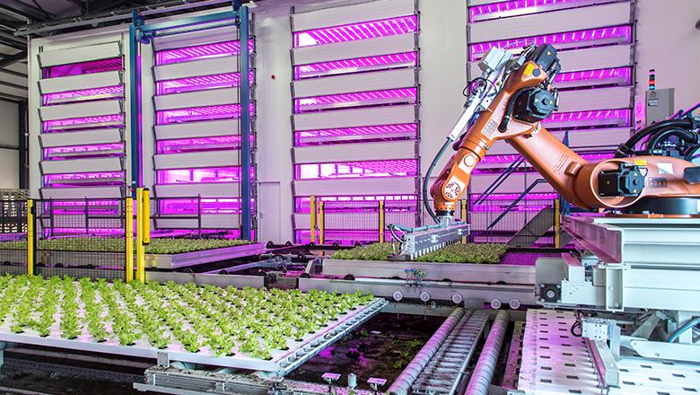 IIoT-productieketen in de tuinbouw
