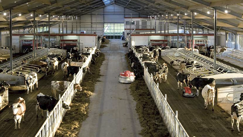 Lely stable equipment with Sentech sensor technology
